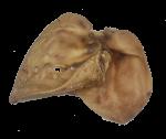 Ucho vepřové | Sušené 1 ks